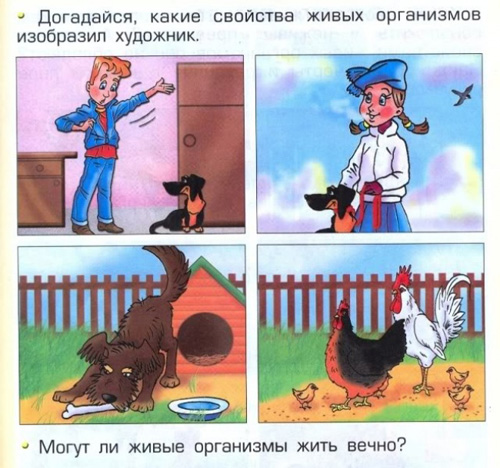 poprobuyte_dogadatsya