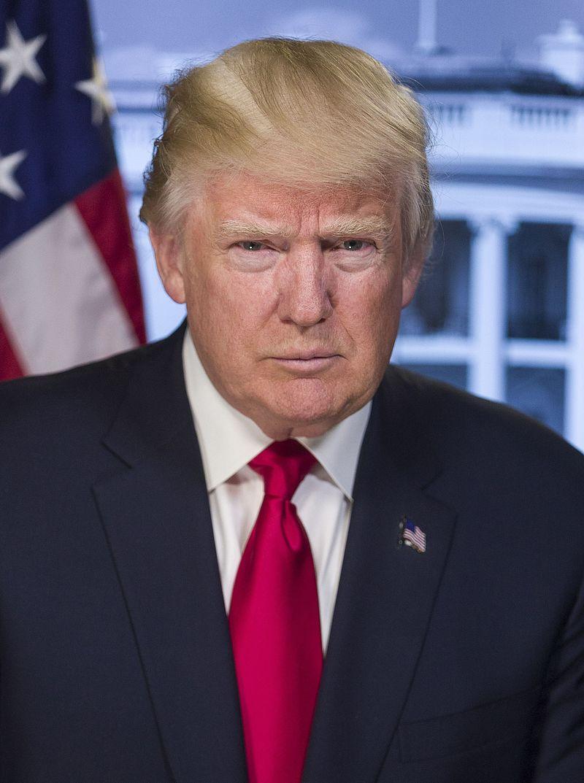 Donald_Trump_official_portrait_(crop)