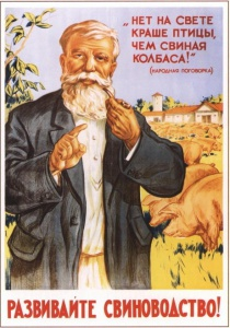 А. Мосин. Развивайте свиноводство! 1955