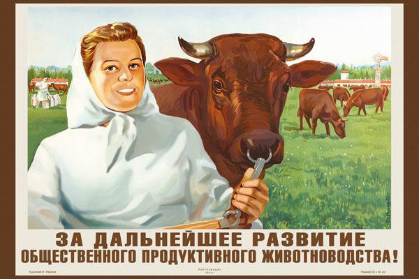 Советский плакат: За дальнейшее развитие общественного продуктивного животноводства!