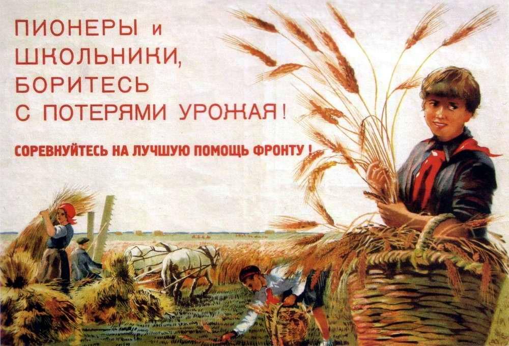 Пионеры и школьники, боритесь с потерями урожая! Соревнуйтесь на лучшую помощь фронту! (1942 год)