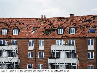 Рис. 2. Провалы черепицы на крыше после весеннего снегопада. Бавария. 2000 г.