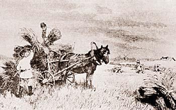 Рис. 6. Уборка ржи. Рисунок Дмитриева-Оренбургского Н. 2-я половина 19-го века