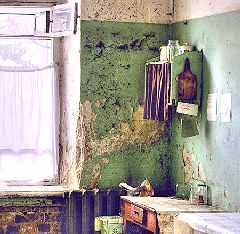 Рис. 7. Окно в коммунальной кухне.